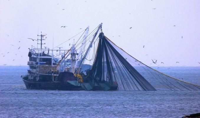 Balık sezonu sona erdi