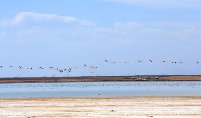 'Kuş cenneti'ni kuraklık vurdu