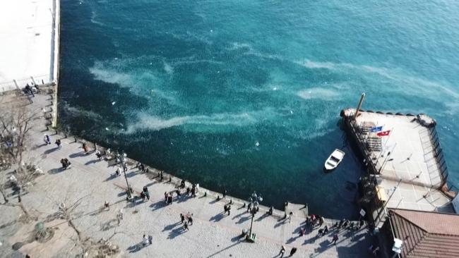 İstanbul Boğazı'nı denizanası bastı
