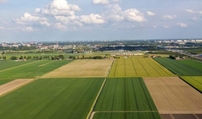 Salgın tarım arazilerinde izinsiz yapılaşma tehdidini artırdı
