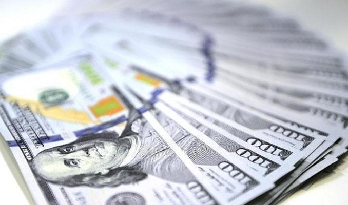 Kamu bankalarının döviz fazlası geriledi
