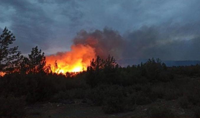 Muğla ve İzmir'de orman yangınları!