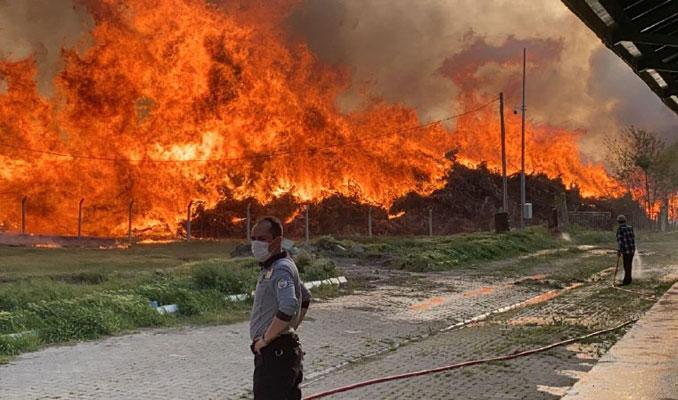 Afyonkarahisar'da biyoenerji santralinde yangın