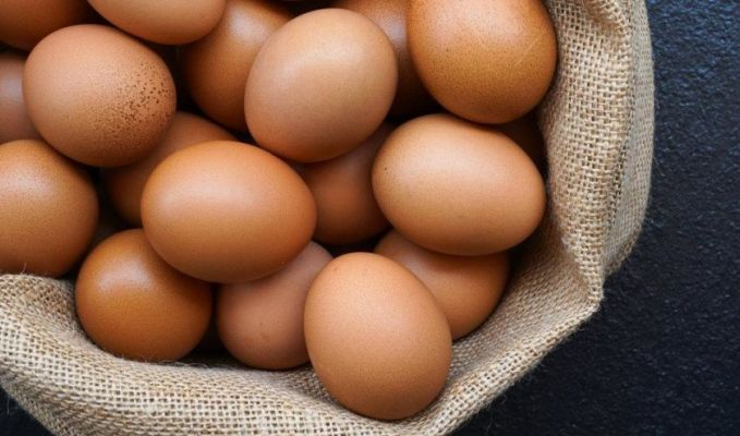 Yumurta ihracatında damızlık talebiyle artış yaşanıyor