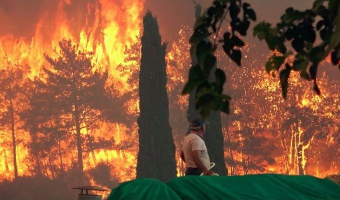 Orman yangınları nasıl aynı anda başladı?