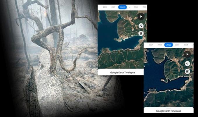 Yangın bölgelerindeki yıldan yıla değişimin özeti