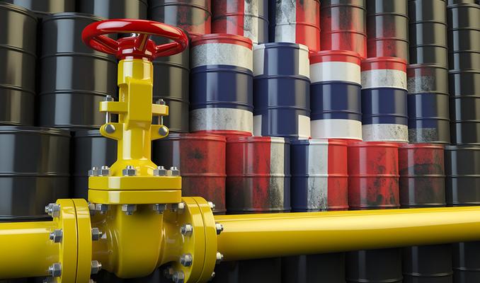 Norveç'in başı 1,4 trilyon dolarlık petrol fonuyla dertte