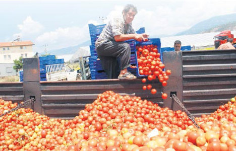 Çiftçilere sahte çek tuzağı